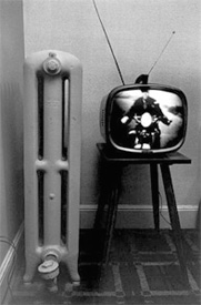 Lee Friedlander
