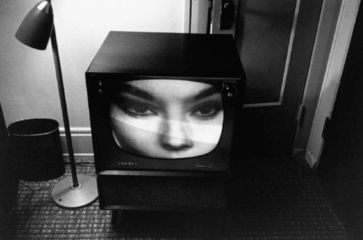 Lee Friedlander/ Fotógrafo